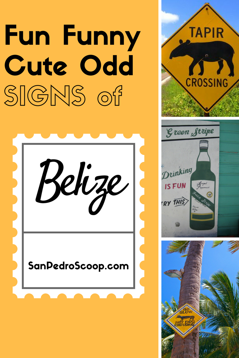 The Fun, Funny, Quirky And Just Plain Odd Signs Of Belize. Unc Fan Signs. Couple Wall Art Stickers. Infertility Banners. Iphone 4s Decals. Cobalt Boat Decals. Twitter Banners. Aboriginal School Murals. Reverse Lettering