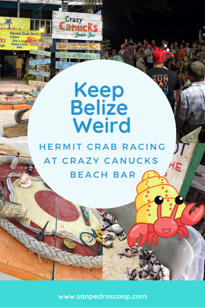 Crazy Canuck Hermit Crab Races