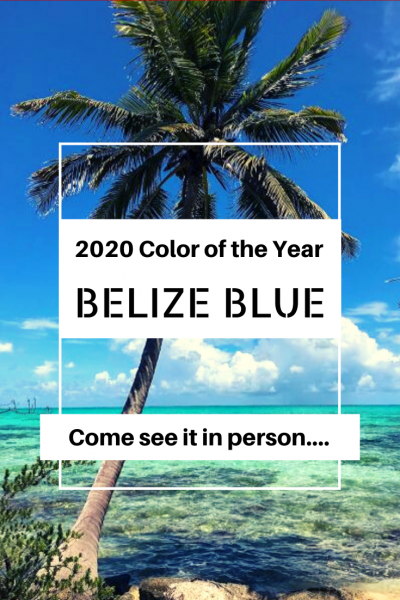 2020 Color of the Year:  Belize BLUE!  Come see your new favorite color in person...