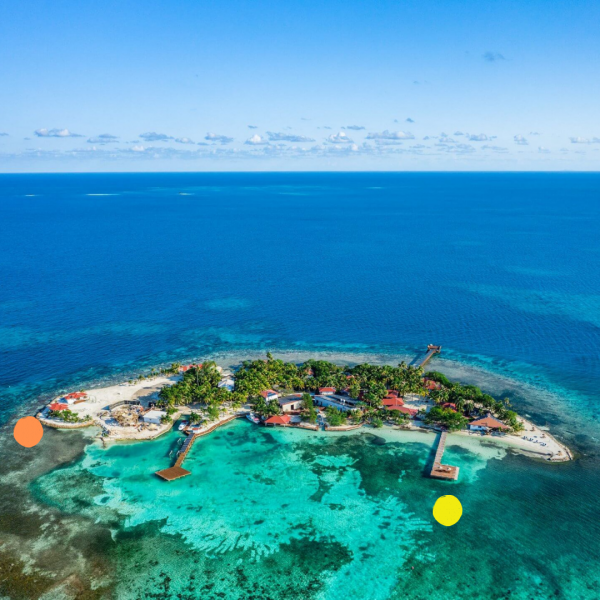 Ray Caye Overview